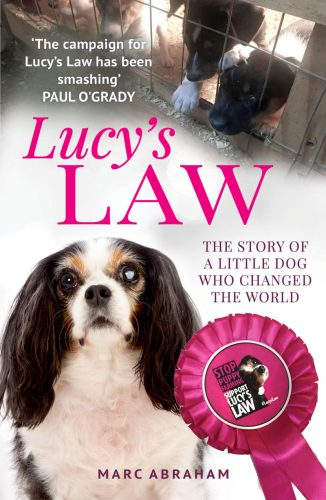 Lucy's Law Book Cover