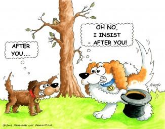 dog-park-etiquette-a
