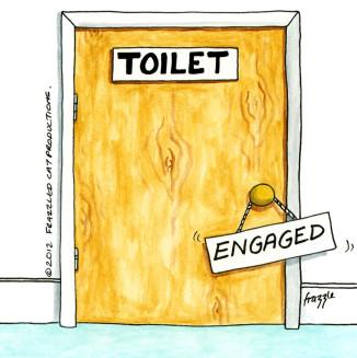 MVD Treatment Toilet Door